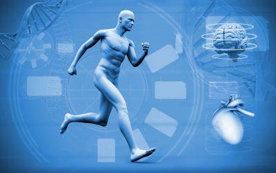 Los Neurocientíficos explican por qué el correr aporta claridad a la mente